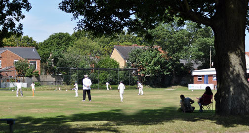 Sheldon